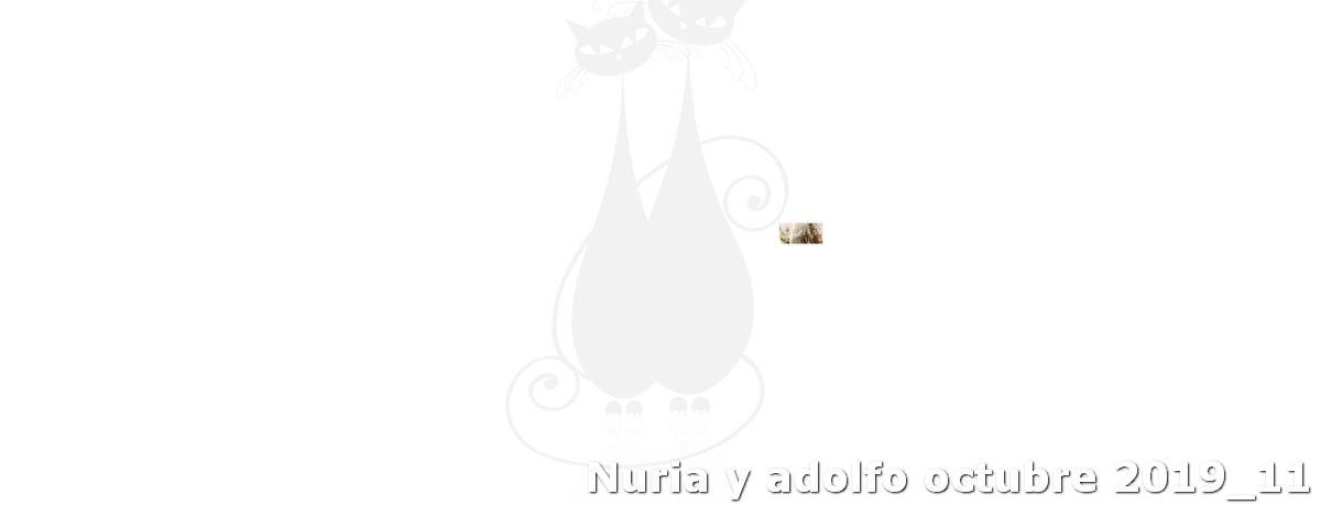 Nuria Y Adolfo Octubre 2019 11